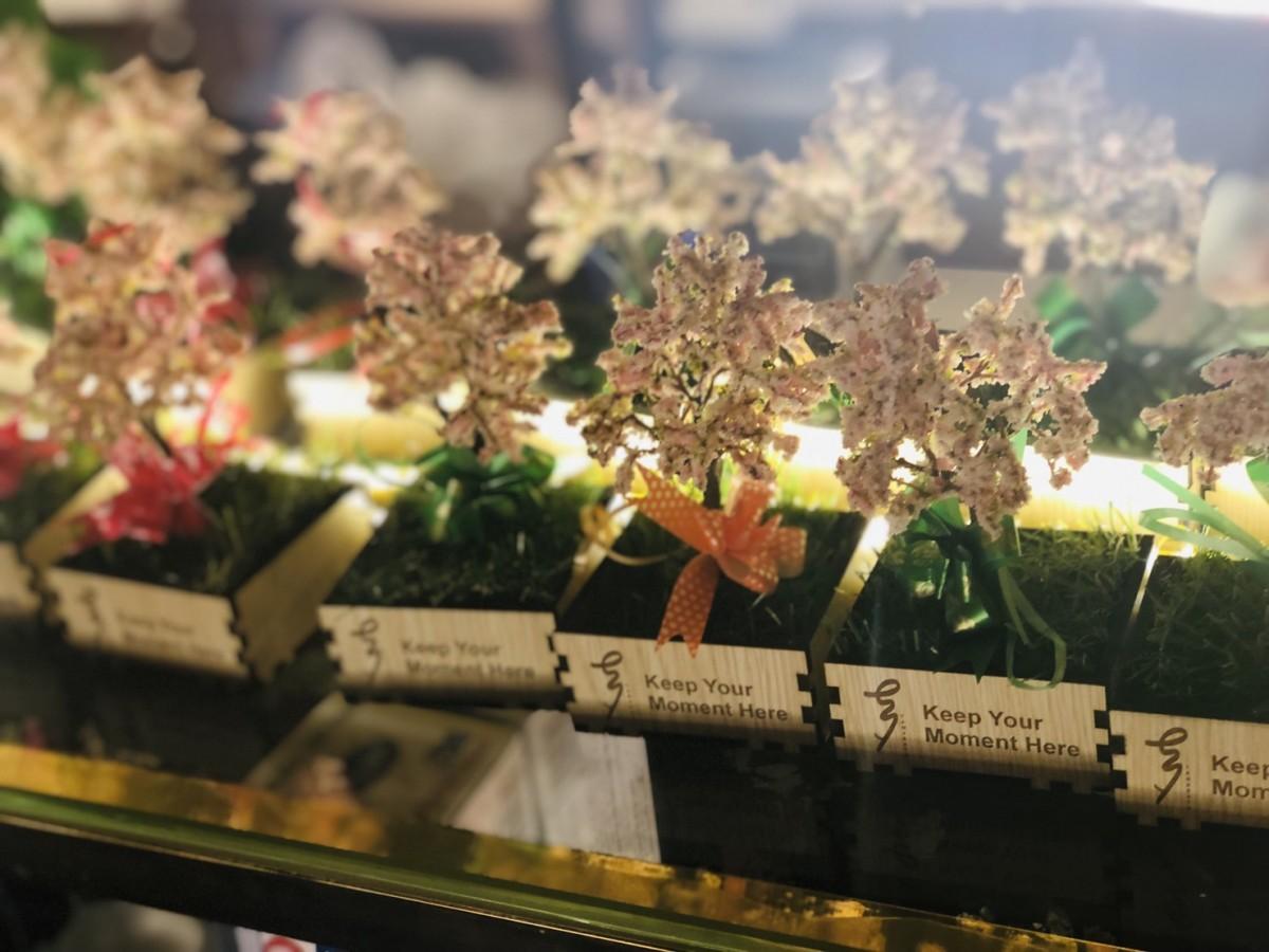 quà tặng ngày nhà giáo việt nam tại Tanabata